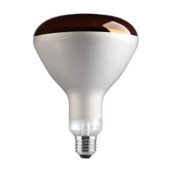 Lampada infrarossi 250 W riscaldante alluminata